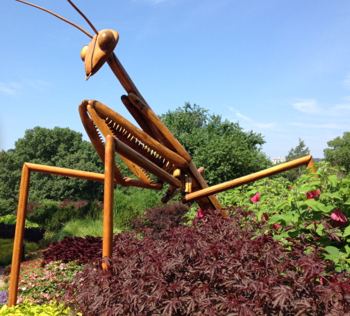 Praying Mantis sculpture by David Rogers