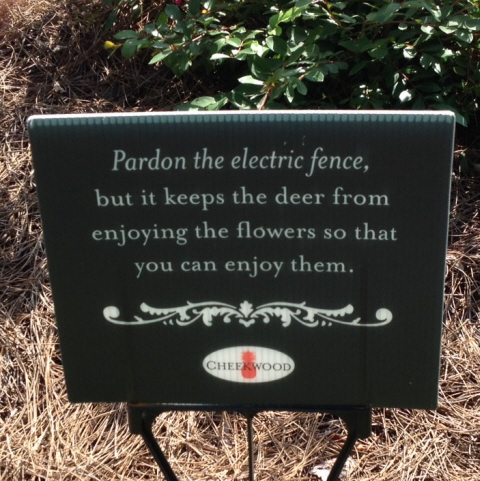 Yes, the fancy garden has an electric fence