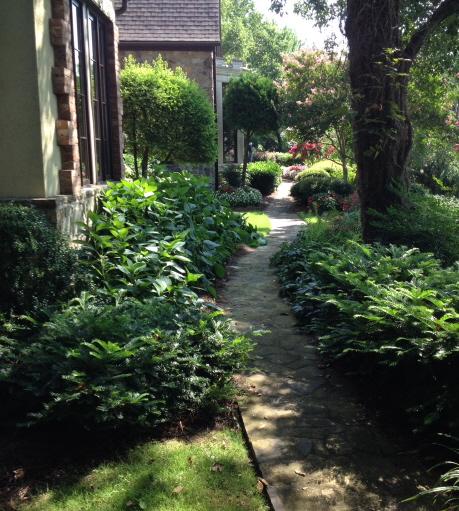 A shady garden path