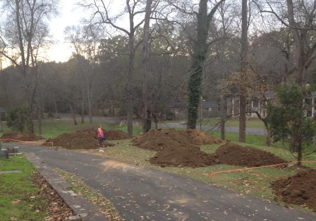 garden development 1