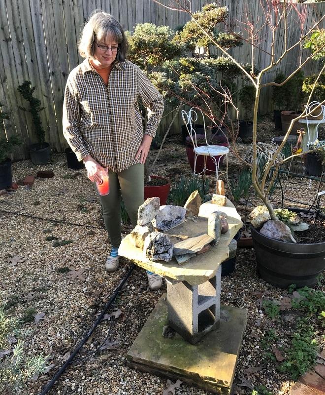 Saikei base in garden ready
