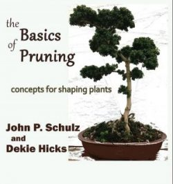 Internet launch Basics of Pruning